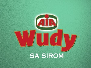TV CAMPAIGN FOR AIA WUDY HAS STARTED